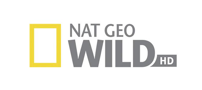 【RU】NAT GEO WILD HD LIVE